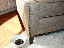 Best Place To Buy Leather Sofa by Where To Buy Nailhead Trim For Furniture Popular Home Design