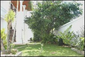 backyard escapes veranda gardens nursing home cincinnati backyard escapes modern