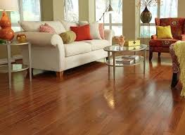 Laminate Flooring And Dogs Best Flooring For Dogs Cats And Kids Bob Vila