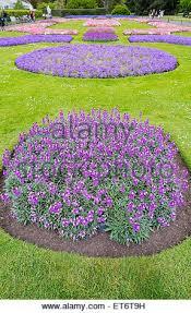 flower garden of royal botanical gardens peradeniya sri lanka