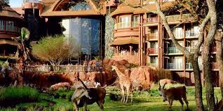 disney u0027s animal kingdom lodge travelzoo