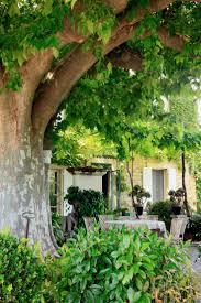 jardin paysager avec piscine les 685 meilleures images du tableau espace extérieur u0026 jardin par