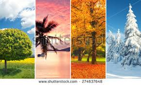 season stock images royalty free images u0026 vectors shutterstock