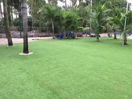 Florida Landscape Ideas by Fake Turf Brewster Florida Landscape Ideas Commercial Landscape