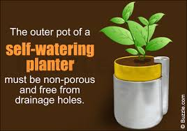 self watering make self watering planters at home and keep your plants from drying