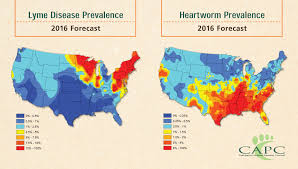 the forecasts are in 2016 will be a big year for ticks and mosquitoes