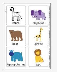 jungle animal flash cards thema dieren animal