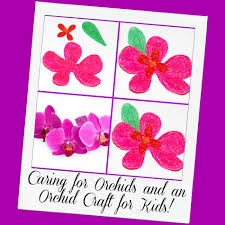 caring for an orchid and an orchid craft for kids wikki stix