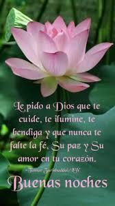 imagenes religiosas para desear feliz noche imagen de una bella flor con mensaje para desear buenas noches