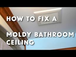remove mildew from bathroom ceiling how to get rid of bathroom ceiling mold www stevemaxwell ca