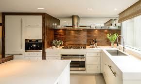Kitchen Cabinets Modern Kitchen Contemporary Kitchen Kitchen Cabinet Materials