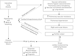 pulmonary vascular and cardiac impairment in interstitial lung
