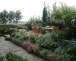 roof garden plants 6 advantages of garden on roof