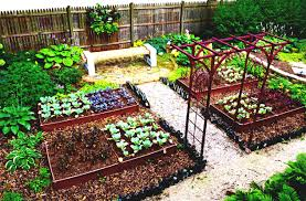 creative vegetable garden simple home vegetable garden design