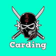 tutorial order barang carding carding learn credit card hacking for noobs cyberninjas
