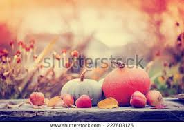 thanksgiving day concept background sand stock photo 156152357