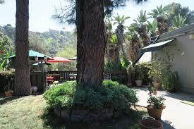 Backyard Beer Garden - the griffith park beer garden is the perfect summer pop up
