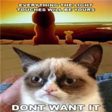 Grump Cat Meme - grumpy cat meme roblox