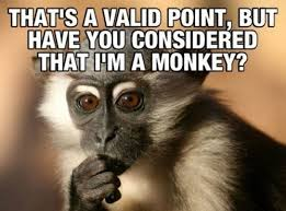 Funny Monkey Meme - 35 very funny monkey meme photos and pictures