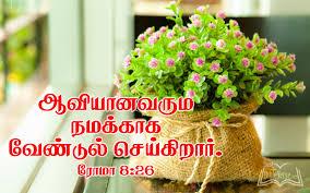 jesus christ wallpaper with bible verse in kannada