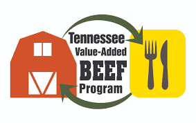 Tennesse by Tennessee Value Added Beef Program