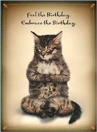 Birthday Meme Cat - cat memes happy birthday cat memes funny cat memes pictures