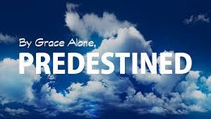 17 verses support predestination u0026 doctrine election
