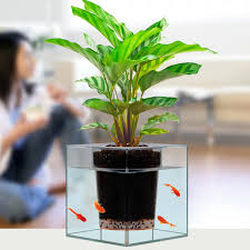 online get cheap plant pots crystal aliexpress com alibaba group