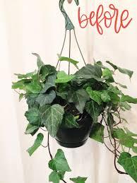 plastic nursery hanging planter diy makeover child at heart blog