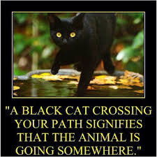 Funny Friday The 13th Meme - black cat clipart friday the 13th