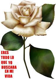 imagenes para enamorar con flores milagros gallardo google