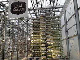 check out the world u0027s largest indoor vertical farm capable of