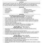 examples of resumes 87 enchanting sample professional resume
