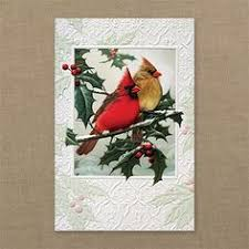 pumpernickel christmas cards christmas cards cardinal christmas pumpernickel press made in the