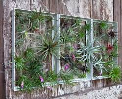 wall design ideas plant outdoor wall decor pot simple
