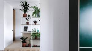 kitchen and home interiors green kitchen and wall of plants feature in low budget apartment