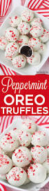 peppermint oreo truffles recipe oreo peppermint and truffle