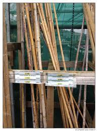 brise vue en bambou pas cher comment protéger du vent ses cultures pour pas cher se