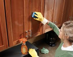 Magnificent  How To Clean The Kitchen Cabinets Inspiration - Cleaner for wood cabinets in the kitchen