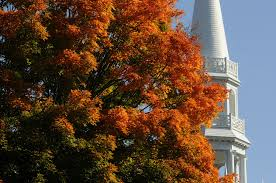 New England Foliage Map by Spots To See Great Fall Foliage Color In State And New England