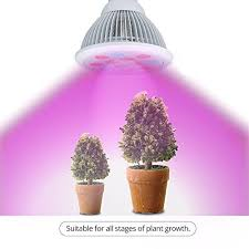 Grow Lights For Indoor Herb Garden - 43 best herb garden images on pinterest herb garden herb seeds