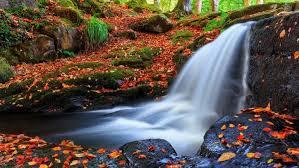 imagenes de otoño para fondo de escritorio cascada otono arboles piedras naturaleza fondos de pantalla hd