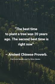 the best time to plant a tree was 20 years ago the second best