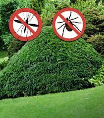 Mosquito Spray For Backyard by Mosquito U0026 Tick Control Prevention U0026 Facts New England