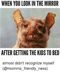Mirror Meme - when you look in the mirror after getting the kids tobed almost