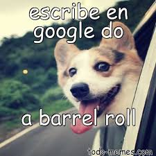 Do A Barrel Roll Meme - arraymeme de escribe en google do a barrel roll