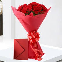 Red Carnations Send Carnations Flowers Online White Carnations Ferns N Petals