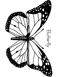 coloring pages of butterfly butterfly coloring pages primarygames com unit invertebrates