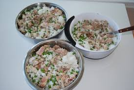 andrewrogers net homemade food for a dog with bladder stones