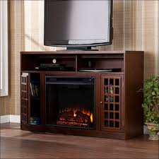 Portable Electric Fireplace Living Room Magnificent Best Electric Fireplace Tv Stand